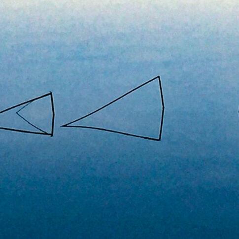abgeknickte Schilfhalme spiegeln sich an der Wasseroberfläche